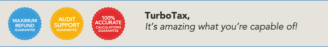 TurboTax, it's amazing what you're capable of.