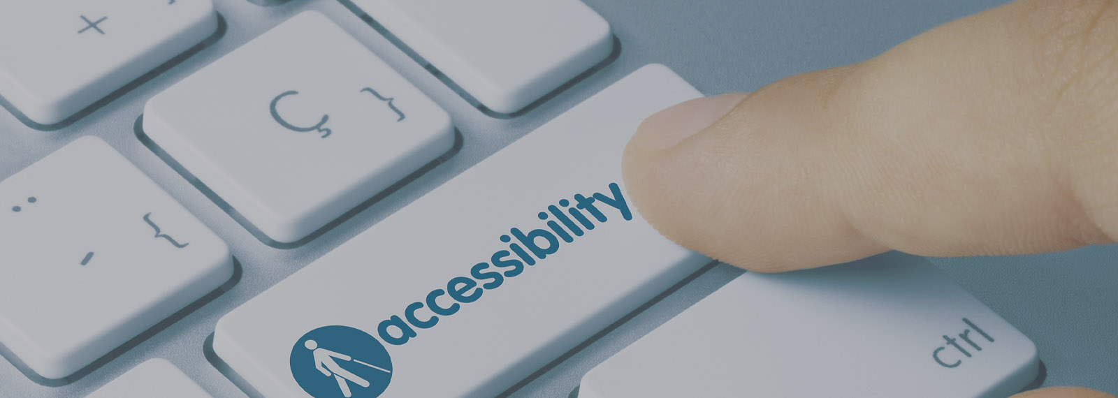 ADA Accessibility Page Banner