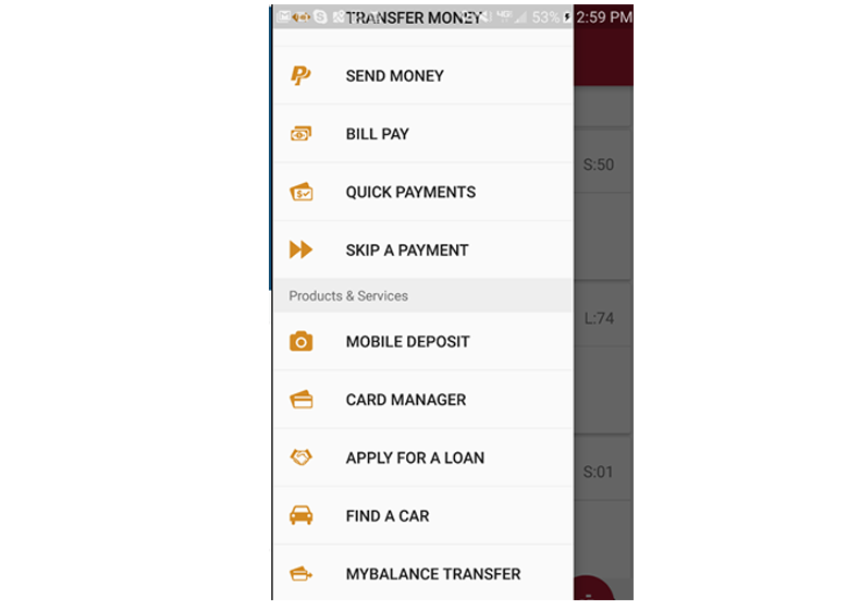 Mobile Finance Manager 10